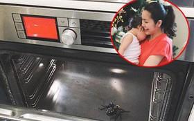 Mới 3 tuổi, quý tử nhà Hà Tăng đã biết pha trò khiến mẹ phát hoảng