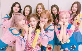 Idol Hàn Quốc nào được hình thành từ các show sống còn?