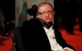 Rợn người với website dự đoán được cái chết của Stephen Hawking cùng hàng loạt người nổi tiếng, và sự thật đằng sau nó