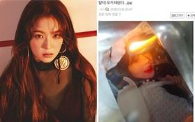Được khen là nữ thần ngoan hiền của Kpop, Irene bất ngờ bị fan nam đồng loạt đốt ảnh và tẩy chay vì lý do này!