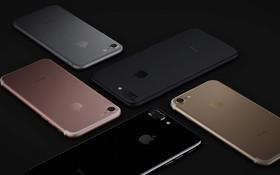 iPhone SE gây sốc khi thắng cả iPhone X trong top 5 điện thoại Táo đáng mua nhất 2018