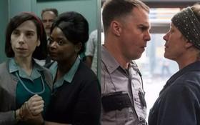 Oscar trước giờ G, mọt phim toàn cầu bầu chọn phim yêu thích cực kì sôi nổi!