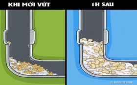 10 loại rác tuyệt đối không vứt vào ống cống nếu không muốn một ngày nhà ngập nước thải