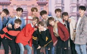 Wanna One thông báo xé lẻ đội hình, kết hợp cùng các ca sỹ khác