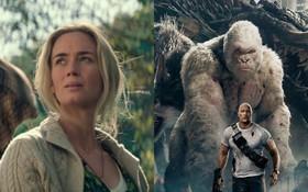 Vì sao phim hạng B tồn tại và sống tốt ở Hollywood thời nay?