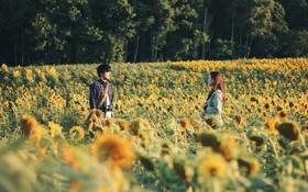 """Được quay ở """"thị trấn nhiếp ảnh"""" nên đừng hỏi vì sao Nhật Bản trong """"Nhắm mắt thấy mùa hè"""" lại đẹp ngẩn ngơ đến thế"""