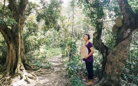 Cô giáo về hưu 15 năm sống trên ốc đảo ở Vĩnh Phúc: Không ra chợ, không biết bệnh tật và không cần đến tiền!