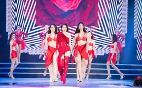 Thí sinh Hoa hậu Việt Nam khoe body nóng bỏng với bikini, luyện tập cùng Chi Pu trước đêm thi Chung khảo