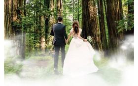 """Say đắm trong khu vườn """"Miracle Forest"""" tại Gem Center"""
