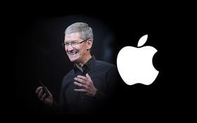 """Tiết lộ cuộc đời vị """"thuyền trưởng Apple"""": Từng suýt hiến gan cho Steve Jobs, sự nghiệp đi đâu cũng làm chức to"""