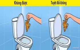 8 loại rác tuyệt đối không vứt vào bồn cầu nếu không muốn có ngày WC ngập ngụa trong nước thải