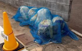 Xem cách người Nhật đổ rác, bạn sẽ hiểu tại sao cả thế giới phải thán phục quốc gia này