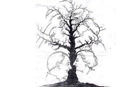 Thánh soi mới nhìn thấy có bao nhiêu khuôn mặt ở xung quanh thân cây