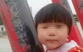 Bị tiền làm mờ mắt, chú bắt cóc và sát hại cháu gái 4 tuổi