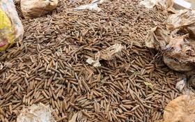 Cận cảnh gần 6 tấn đầu đạn trong vườn nhà dân ở Hưng Yên