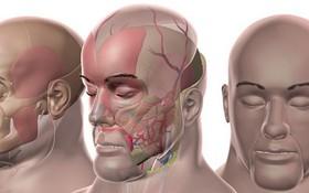 Các bác sĩ Pháp vừa làm nên lịch sử, khi cấy ghép khuôn mặt lần thứ hai cho cùng một người