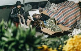Sợ bị trộm giữa đêm, người dân Hà Nội dựng lều, trùm chăn canh đào quất trên phố