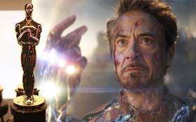 """Khán giả ENDGAME sôi máu vì """"Người Sắt"""" Robert Downey Jr. vắng mặt trong danh sách ứng cử Oscar"""