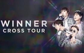 """NÓNG: WINNER sẽ lần đầu tiên tổ chức concert tại Việt Nam thuộc khuôn khổ """"CROSS Tour"""" hậu Tết Nguyên Đán 2020"""