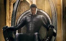 """Chuyện có thật: Vương quốc """"báo đen"""" Wakanda được Mỹ đưa vào danh sách đối tác thương mại lớn"""