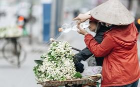 Hoa bưởi tháng 2 theo gió xuống phố Hà Nội, giá lên đến 300.000 đồng/kg vẫn cháy hàng