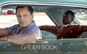 """Vì sao """"Green Book"""" chiến thắng Oscar 2019 mà nhìn đâu cũng toàn gạch đá?"""