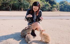 Góc đáng yêu: Hòn đảo thỏ nhiều hơn người ở Nhật Bản, nhìn thôi cũng đã muốn