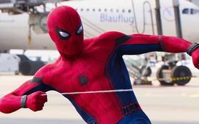 Cày lẹ 4 phim sau để đi xem Spider-Man: Far From Home cho nó mượt!