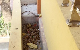 Bắc Giang: Một học sinh lớp 7 bị thương nặng do ngã từ tầng 2 xuống sân trường