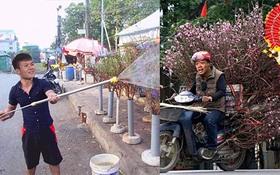 Cười lăn với ảnh chế tuyển thủ Việt Nam ngày giáp Tết: Quang Hải, Công Phượng đi buôn đào, thầy Park cũng hai tay hai cành chơi Tết