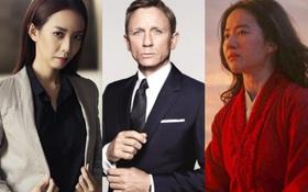"""Hết Hollywood lại tới điện ảnh Việt """"đóng băng"""" vì COVID-19: Hoãn chiếu, hủy quay hàng loạt, đạo diễn phim Marvel phải cách ly"""