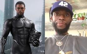 """Xôn xao diện mạo của Black Panther khi cách ly: Còn đâu tài tử body 6 múi của """"Avengers"""", đến Dispatch cũng phải đưa tin"""