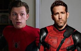 """Còn ai tội bằng """"Nhện nhí"""" Tom Holland: Lên lịch """"detox"""" mùa cách ly thì bị """"Deadpool"""" Ryan Reynolds phá hoại"""