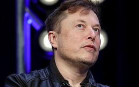 Cổ phiếu Tesla có phiên lao dốc mạnh nhất trong lịch sử, nhưng đáng nói là Elon Musk đã hoàn tất bán cổ phiếu mới và thu về 5 tỷ USD từ tuần trước