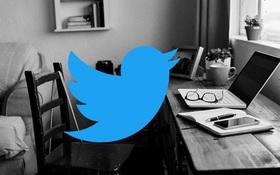 Twitter: 'Nhân viên của chúng tôi có thể làm việc ở nhà mãi mãi!'