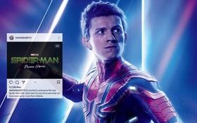 """Dàn cast Spider-Man 3 """"tung hỏa mù"""" khiến netizen Việt lú cực mạnh, fan đào ra ngay sự thật chấn động liên quan WandaVision?"""