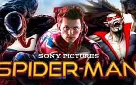 """Sony khẳng định sẽ xây vũ trụ Marvel riêng, khả năng cao đòi lại Spider-Man chứ không cho """"chung chạ""""?"""