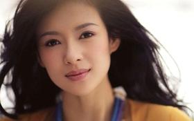 Những người đẹp Hoa ngữ bị điều tiếng vì gian dối