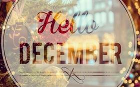 Tháng Mười Hai về, em chờ đợi điều gì?
