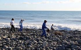 Người dân thông báo tìm thấy mảnh vỡ máy bay thứ hai trên đảo Reunion