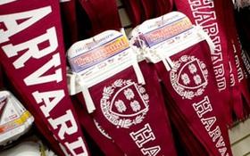 Chê sinh viên Harvard kiêu ngạo, nam sinh học trường thường