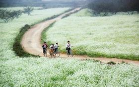 Nức lòng những đoạn clip đẹp như mơ về các miền Việt Nam