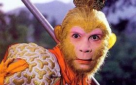 """Bạn có chắc mình đã nhẵn mặt """"anh Khỉ""""?"""