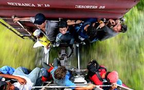 """Người nhập cư liều mình đánh đu trên chuyến tàu """"tử thần"""" tới Mỹ"""
