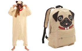 Khám phá bộ sưu tập phụ kiện dành cho người yêu chó pug