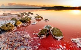 Nín thở trước vẻ đẹp hoang sơ của hồ nước màu hồng như trên sao Hỏa