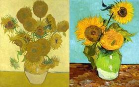 """Hướng dương - """"Bó hoa nghệ thuật"""" của riêng Van Gogh"""