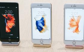 """Loạt phụ kiện """"chính chủ"""" Apple khiến iPhone mới hấp dẫn hơn"""