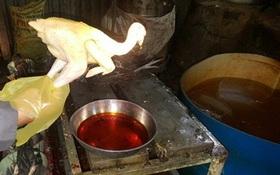 Chà bông thơm lừng, gà vàng ươm ngon mắt nhờ hóa chất độc hại