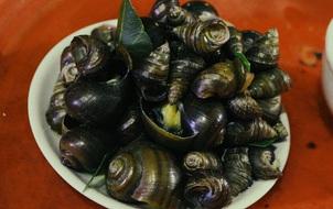 Quán ốc luộc vỉa hè 20 năm chuyên đắt khách lúc nửa đêm ở Hà Nội